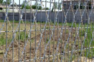 Сетка колюче-режущая Пиранья 2х6 на заборе из сварных панелей