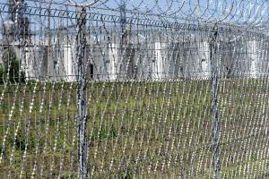 Забор с установленной колючей сеткой Пиранья 2х6